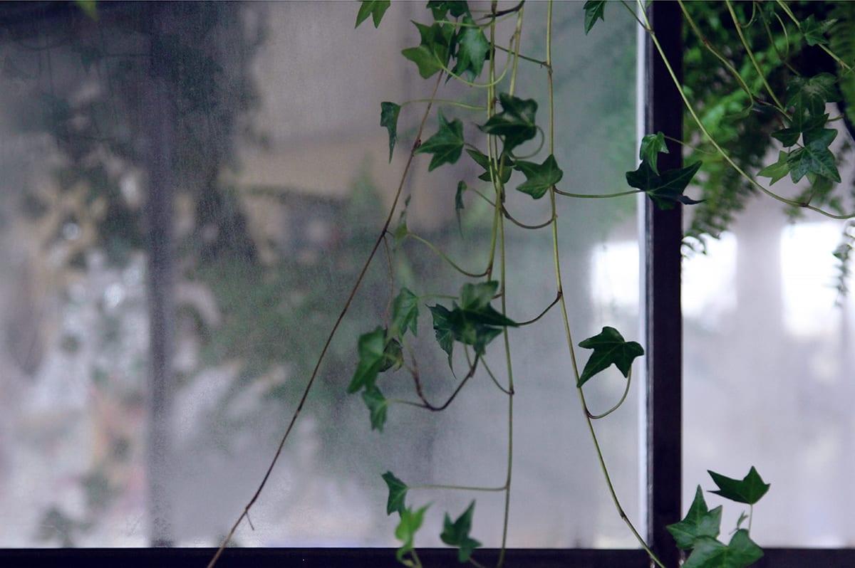 Glass for interior (2)