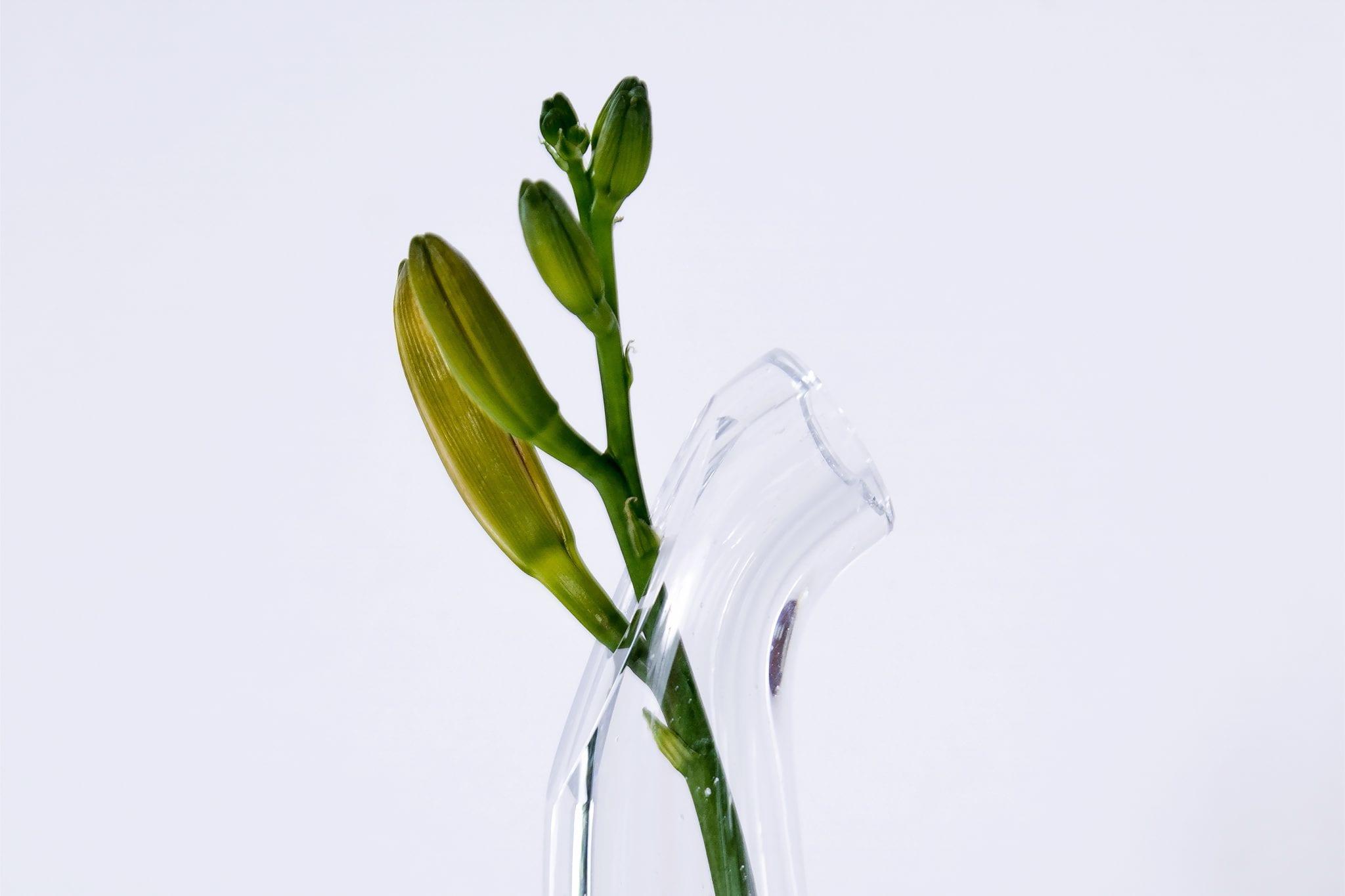 Fermas vaze_1